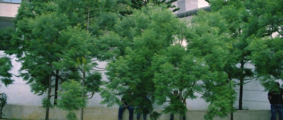film-1_0016